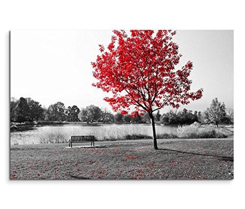 Toile tendue sur châssis Motif panorama avec banc au bord d'un étang dans un parc Photo en noir et blanc avec arbre à feuilles rouges 120x 80cm