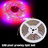 Pflanzenlampe,5050 SMD LED Schalttafel 5M Wasserdicht Flexibel Pflanzenlicht Strip Streifen Band Pflanzenleuchte Pflanzen Wachstumslampe Grow Licht Blume Garten user