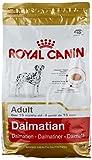 Royal Canin Dalmatian 22 Adult 3 kg, 1er Pack (1 x 3 kg)