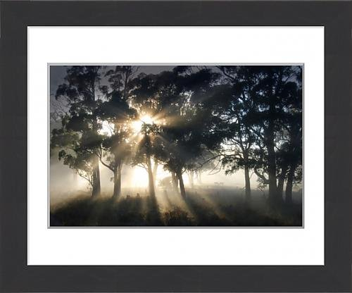 framed-print-of-blissful-morning-near-paradise-central-tasmania-australia
