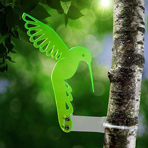 attrape-soleil-colibri-en-plexiglas-transparent-xxxx-fluorescent-leuchtende-bords-egalement-dans-le-