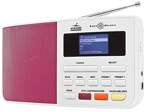 Dual Internetradio 74254 im Test