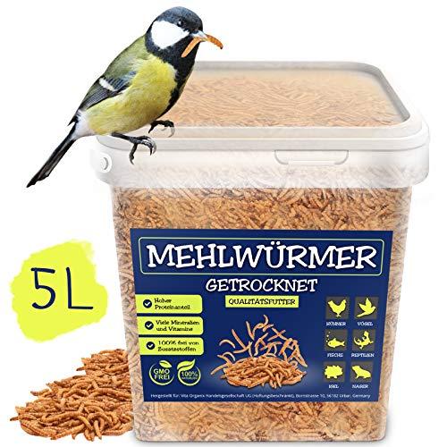 EWL Naturprodukte Mehlwürmer getrocknet 5L Eimer, der ideale Insektensnack für Vögel, Fische & Reptilien, 100% rein & natürlich