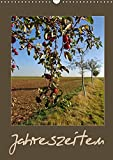 Jahreszeiten (Wandkalender 2019 DIN A3 hoch): Die Natur eines Jahres im Wandel (Monatskalender, 14 Seiten ) (CALVENDO Natur)