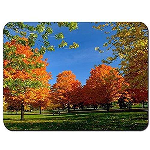 Mauspad Herbst Park Bäume Blätter Bank Picknick Mauspad Mousepad Mauspad Mauspads Spielmatte 25X30Cm