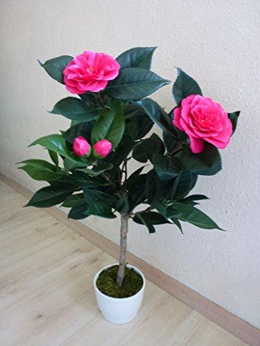 Camelie Kamelie Kunstpflanze fuchsia pink H 65 cm 170206-04 getopft F71
