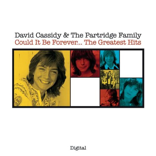 David Cassidy  - Daydreamer/The Puppy Song