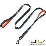 RealDogZ Schwarze 2m Hundeleine mit integriertem Kurzführer mittel-große Hunde 200cm reflektierend gepolstert orange