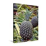 Premium Textil-Leinwand 50 cm x 75 cm hoch, Ananas, Oahu | Wandbild, Bild auf Keilrahmen, Fertigbild auf echter Leinwand, Leinwanddruck (CALVENDO Natur)