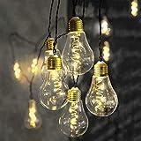 netproshop LED Lichterkette Glühbirne aus Glas Retro Design 10 Lichter Indoor Auswahl, Auswahl:warm Weiss