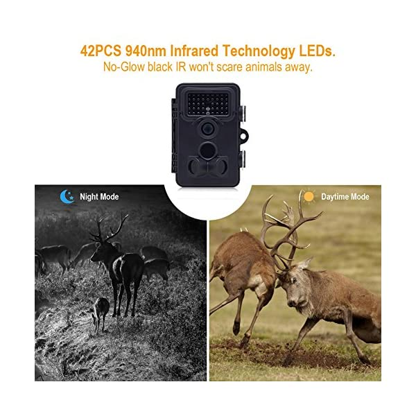 YEPLINS 20MP 1080P Wildlife Trail Camera Cams with Infrared Night Vision