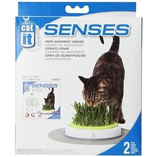 Catit Senses Grass Garden Refill Pack, Pack of 2 12