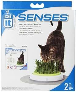 Catit 50777 Senses 2er Nachfüllpack für Grasgarten  50755