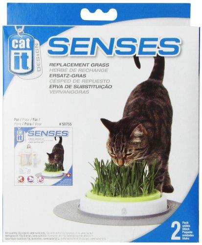Catit Design Senses - Gras Garten 2er-Pack Nachfüllbeutel