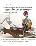 Stretching on the Pilates Reformer: Essential Cues and Images