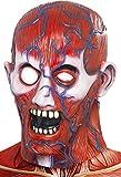 Generico - 350.665 - Adult Maschera di Halloween Anatomia integrale