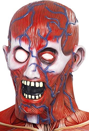 Anatomy Man Maske Leiche von Hagen Skalpierter (Kostüme Maske Leiche)