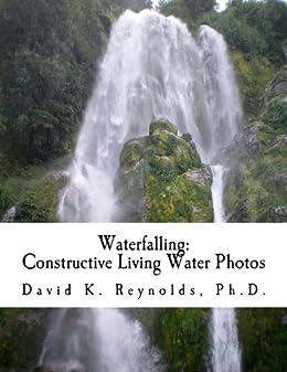 Constructive Living : Waterfalling (Constructive Living Book 9) eBook: David K ...