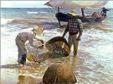 Poster 40 x 30 cm: Fischer in Valencia von Joaquin Sorolla