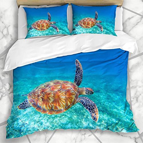 Blue Lagoon Bettwäsche (Soefipok Bettwäschesets Ridley Blue Sea Turtle schwimmt Wasser Olive Lagoon Wildlife Parks Grünes Ökosystem Philippinen Marine Mikrofaserbettwäsche mit 2 Kissenbezügen)