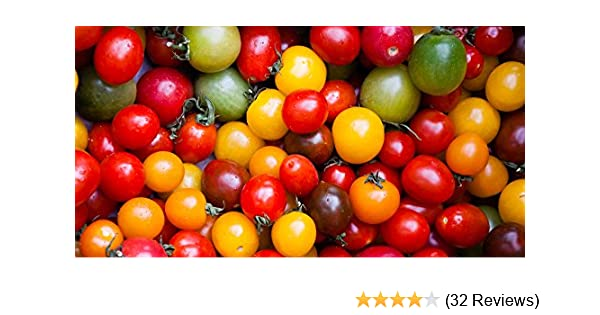 32 Seeds CHERRY Tomato Fast Grow Tomato Plants Seeds Delicious Garden Vegetable