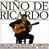 Flamenco 11 -