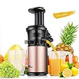 Amzdeal Entsafter - Slow Juicer 43 ± 5 U/min Edelstahl, Gemüse und Obst mit Hoher Saftausbeute,...