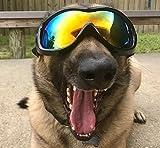 Hi Kiss Hund Goggles Sonnenbrille Anti-Beschlag Brille Schnee-Skifahren Augenschutz Schutzbrille mit abnehmbarer Trageriemen Blau