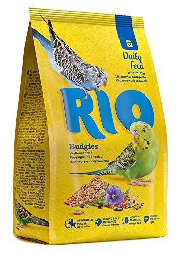 RIO Birds - Best Reviews Tips