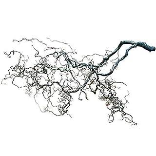 Deko-AST groß - Korkenzieher-AST (120x40 cm): Haselnusszweig | Fensterdeko Zweig | Frühlingsdeko | Osterdekoration Zweige | Osterdeko zum Aufhängen