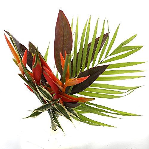 Choice of Green - 1 délice tropical - Bouquet - Hauteur ? 60 cm