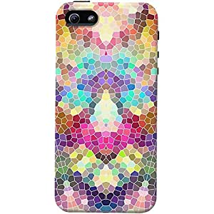 DailyObjects Alhambra Multicolored Case For iPhone 5/5S