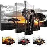 Bilder 170 x 100 cm - Afrika Bild - Vlies Leinwand - Kunstdrucke -Wandbild - XXL Format – mehrere Farben und Größen im Shop - Fertig Aufgespannt !!! 100% MADE IN GERMANY !!! - Savanne – Elefant 0012527c