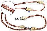 PROFTI Hundeleine aus Nylon, Lederelemente, 4fach verstellbar, große/kleine Hunde, 230cm lang, robust/schwer, Rot/Grün