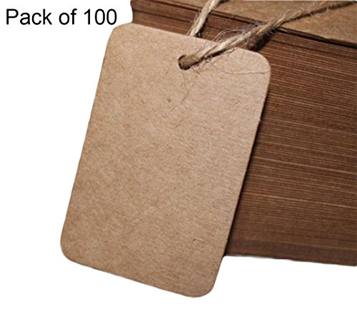 Pflanze Leer Etiketten (Cdet 100 Stück Tag Karte Rechteck Kraftpapier leer Tag / Lesezeichen / Geschenkkarte / Schokolade Verpackungskarte / Drift Flaschenkarte Papieranhänger (Braun))