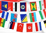 URTop 82 Feet 8.2'' x 5.5'' International String Flags Banners 100 Countries Flags World Flags Pennant Banner for...