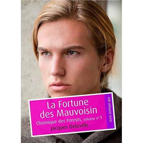 La Fortune des Mauvoisin (érotique gay): Chronique des Forests, volume n°1