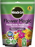 Semi Miracle-Gro fiore magico, fertilizzanti e terra per vasi di fiori e padelle 350 g