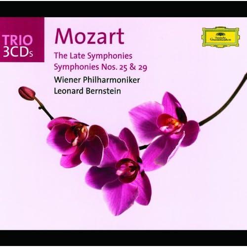 Mozart: Symphony No.25 In G Minor, K. 173dB (K.183) - Allegro