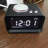 SLB Works Digital Radio Alarm Clock, 5 Adjustable Brightness/2 Alarms/USB Ports Blk