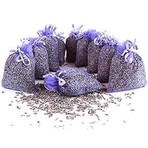 Quertee 10 x Lavendelsäckchen mit echtem französischen Lavendel - Duftsäckchen mit 100 g Lavendel- Lavendelduft zum Entspannen - Mottenschutz im Kleiderschrank