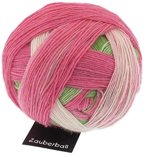 Schoppel Wolle Zauberball Fb. 2079 Durch die Blume, Bunte Sockenwolle mit Farbverlauf zum Stricken oder Häkeln -