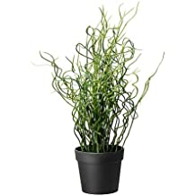 IKEA FEJKA - Artificial planta en maceta, Sacacorchos Rush - 10 cm