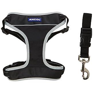 Ancol - Padded Nylon Dog Car Harness - Size - Large 11