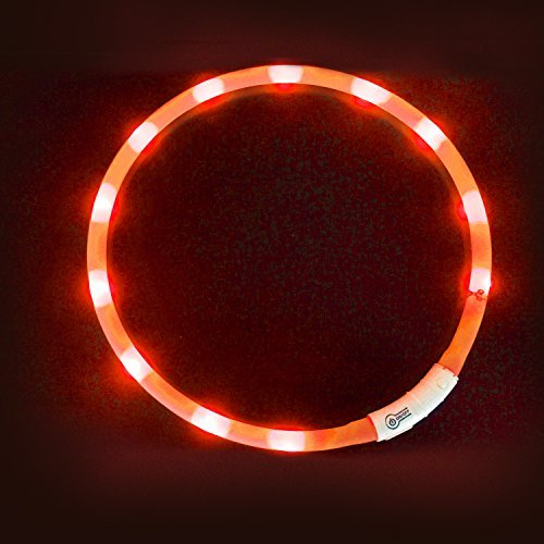 LaRoo LED Cane Collare, Collare Cane LED Lampeggiante di Sicurezza Collare Cane Luminoso Cane Gatto Domestico di Sicurezza Ricaricabile e Misura Regolabile Collare per Tutti i Cani, Gatto
