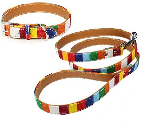 Juego de collar y correa para perro arcoíris disponible en razas XS, pequeñas, medianas, grandes y XL.
