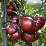 Premier Seeds Direct 35-IFAU-X9CJ - Semillas para verduras