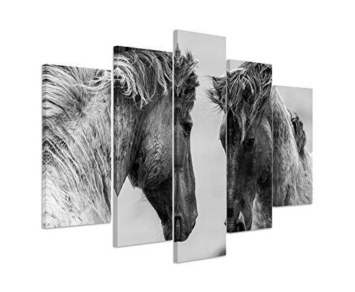 Bild Bilder 5 teilig gesamt 150x100cm Tierbilder – Kämpfende Pferde schwarz weiß