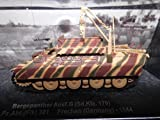 De Agostini - Die Panzer Sammlung Bergpanther Ausf.G(Sd.Kfz.179)Sch.Pz.Abt.(Flk) 301 Frechen (Germany)-1944 (21)