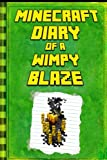Minecraft Diary of a Minecraft Blaze: Legendary Minecraft Diary. an Unnoficial Minecraft Kids Fantasy Books (Minecraft Diary of a Wimpy, Books For Kids Ages 4-6, 6-8, 9-12)